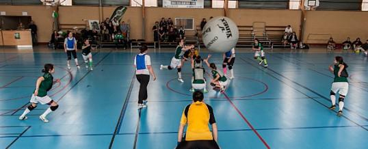 Kin-Ball 2014 : J11