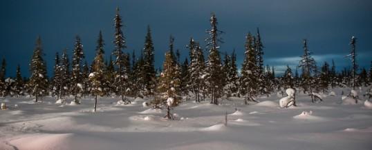 Laponie, Suède