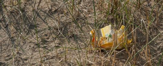 Plastic Pickup à Saint Brévin